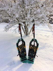 picture of two adult snowshoes, blue, and two walking poles